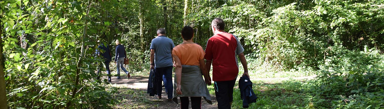 Adultes randonnant sur le sentier pédestre du site plein air Watissart